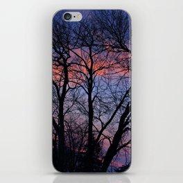 Silhouette #1 iPhone Skin