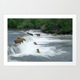 Brown Bears Hunting Fish Art Print