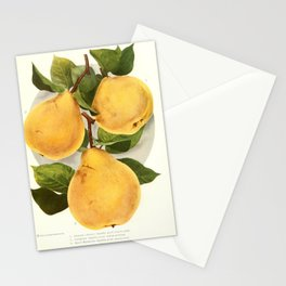 Chase Fruit & Flowers 1922 - Pears 3 Stationery Cards