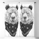 Wild bear by soltib