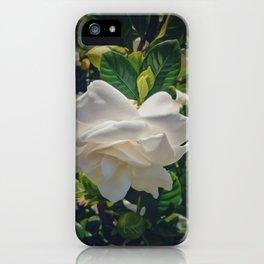 Gardenia Love iPhone Case
