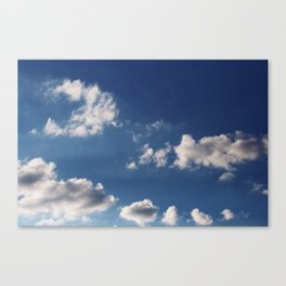 Cottonballs Canvas Print