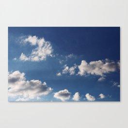Cottonballs Canvas Print