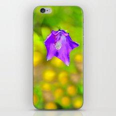Capanula. Mountain flora. Spring on high. iPhone & iPod Skin
