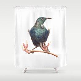 Tui - a native New Zealand bird 2013 Shower Curtain