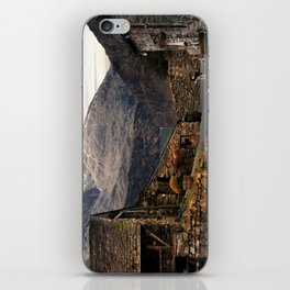 The Old Dog iPhone Skin