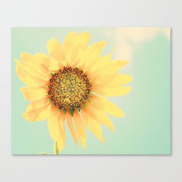 Sunflower Power Pop! Canvas Print