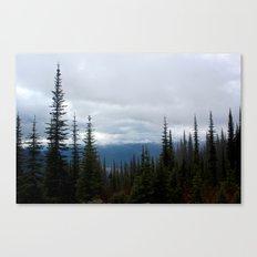 Mountain Trees Canvas Print