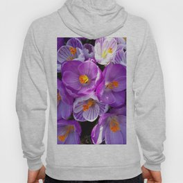 flowering crocuses Hoody