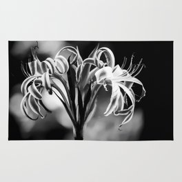 Black and White Lilly  Rug