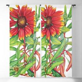 Sunset Daisy Blackout Curtain