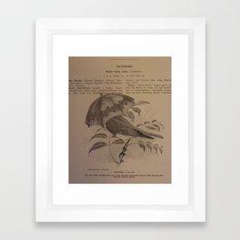 Adaptation #2 Framed Art Print