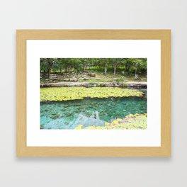 Yucatan Cenote Framed Art Print
