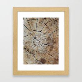 Tree rings of time Framed Art Print