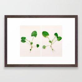 Rorschach leaves Framed Art Print