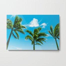 3 Palms Metal Print