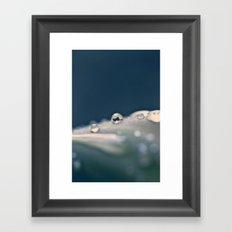 Orbs Framed Art Print