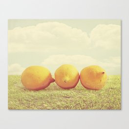Lemongrass Canvas Print