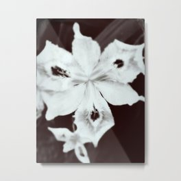 Ghostly Gardens The Specter Flower Metal Print