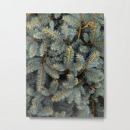 Evergreen Tree Pattern (Color) Metal Print