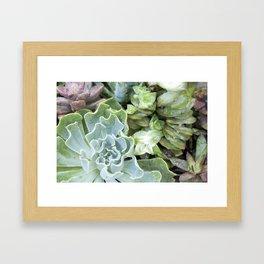 Blue Greens Framed Art Print