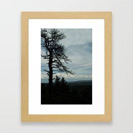 Tree Silhouette Framed Art Print