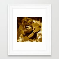 rose gold Framed Art Prints featuring Gold Rose by SouthernComfortArt