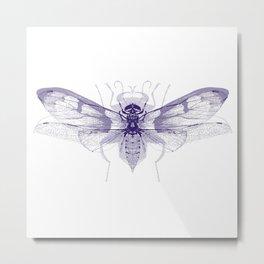 Insect Metamorphosis Art Print Metal Print