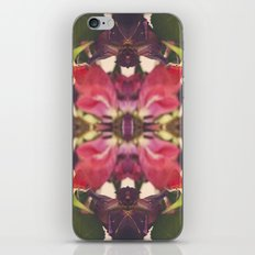Sunset of Roses iPhone & iPod Skin