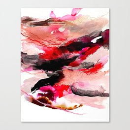 Day 63: Don't let aesthetics distract from true and invisible beauty. Canvas Print
