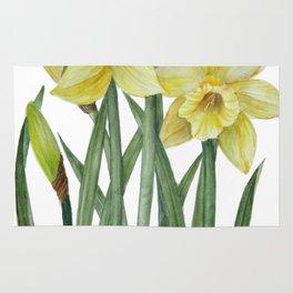 Watercolor Daffodils Botanical Illustration Rug