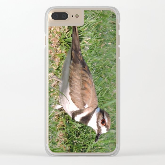 Killdeer Browsing Clear iPhone Case