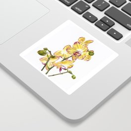 Yellow Phalaenopsis Orchid Traditional Artwork Sticker