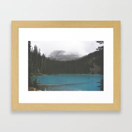The blue whole Framed Art Print