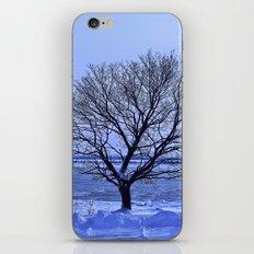 Arbre d'Orléans iPhone & iPod Skin