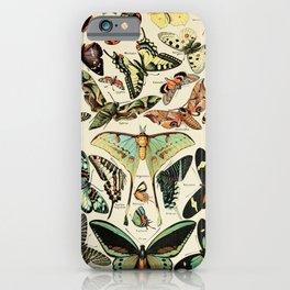 French Vintage Butterflies Chart Adolphe Millot Papillons Larousse Pour Tous Poster  iPhone Case