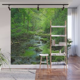 Rocky Forest Creek Wall Mural