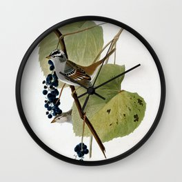 White-crowned Sparrow Wall Clock