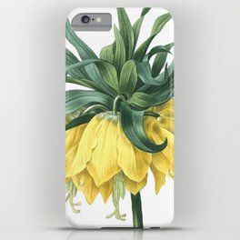 HIGHEST QUALITY botanical poster of Crown Imperial iPhone Case