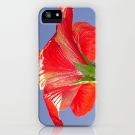 Side View of Scarlet Red Hibiscus In Bright Light iPhone Case