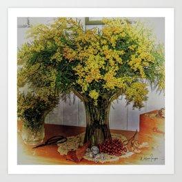 Wattle Bouquet Art Print