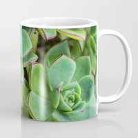 succulents Mugs featuring Succulents by Michelle McConnell