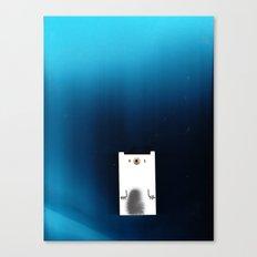 Polar Night Canvas Print