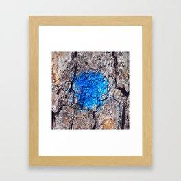 NVSV SPCS_blue blaze Framed Art Print