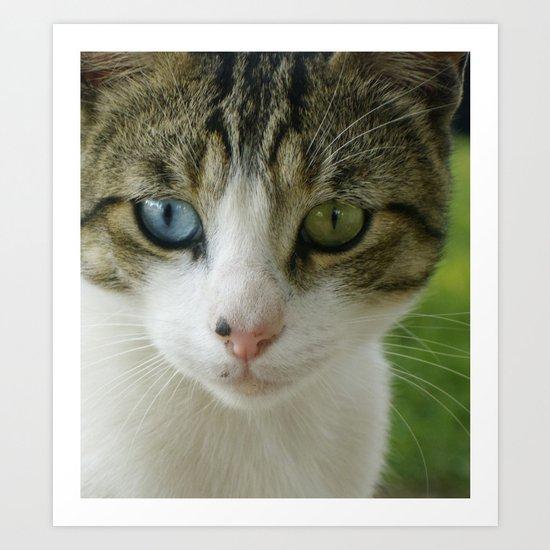 Two beautiful eyes Art Print