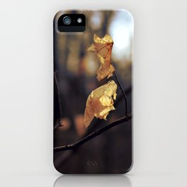 GOLDEN BUT FRAIL iPhone Case