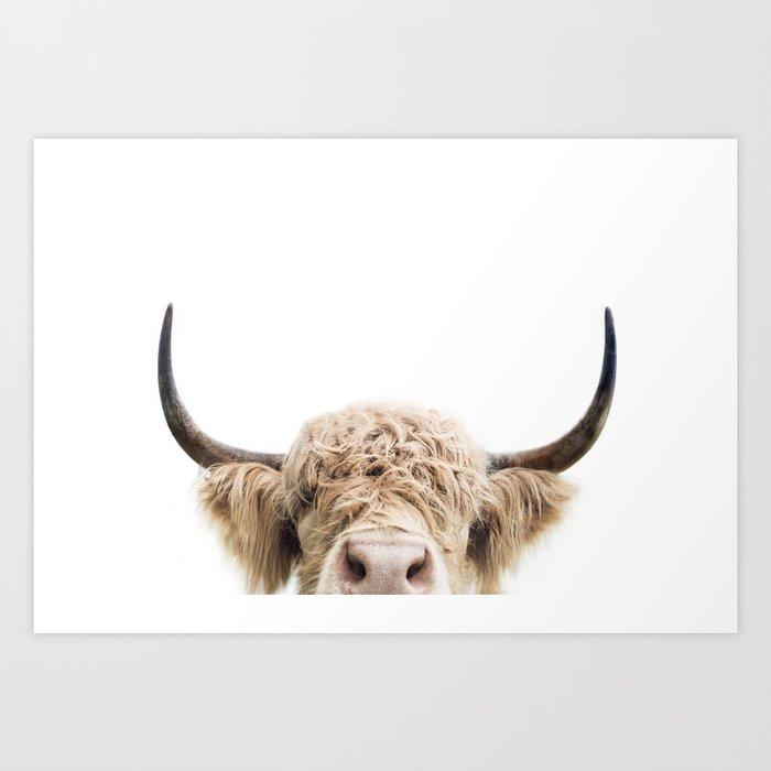 Peeking Highland Cow Kunstdrucke