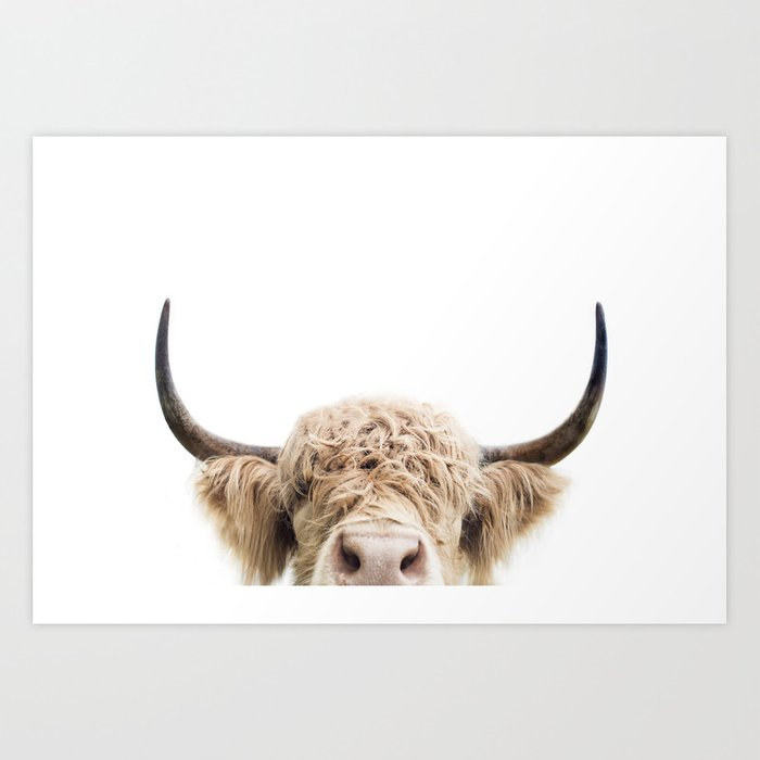 Peeking Highland Cow Art Print