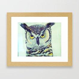 great horned owl two Framed Art Print