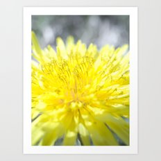 Spring has come Art Print
